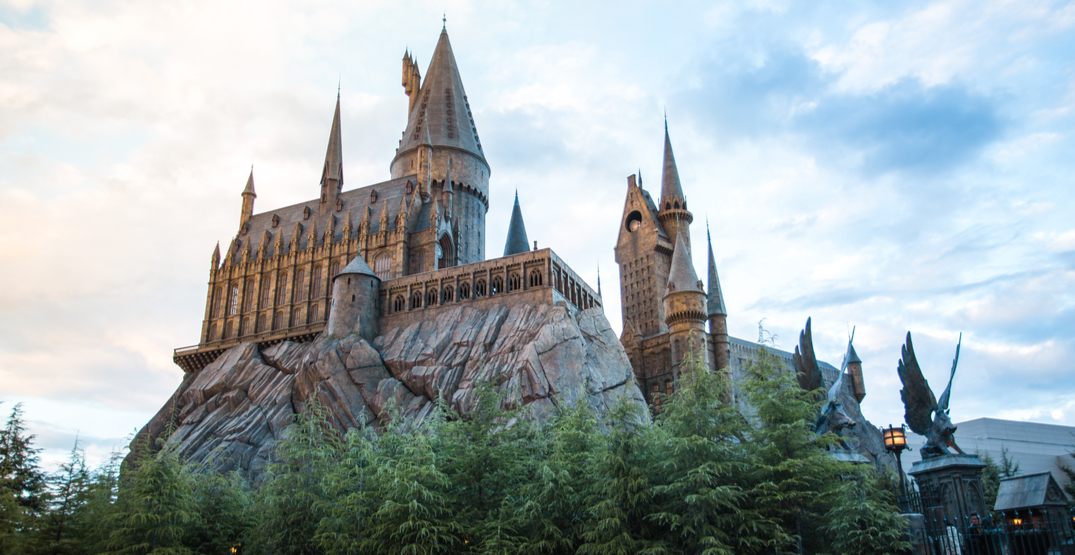 Wizarding World's Day by Day || 3rd of August